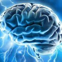 مقاله یادگیری مبتنی بر مغز