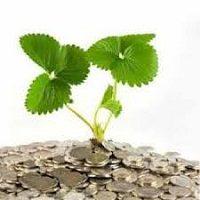 مقاله ساختار سرمایه و کارآیی شرکت